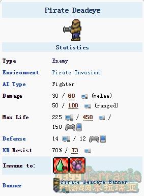 泰拉瑞亚海盗枪手