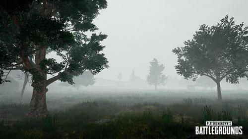 绝地求生大逃杀雾天