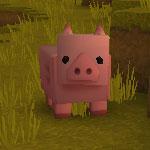 迷你世界猪
