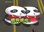 火线精英秀恩爱的熊猫