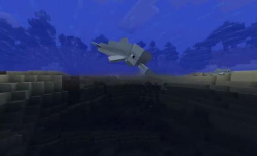 我的世界海豚有什么用 手机版海豚有什么用