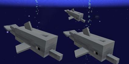 我的世界海豚吃什么 手机版海豚怎么养