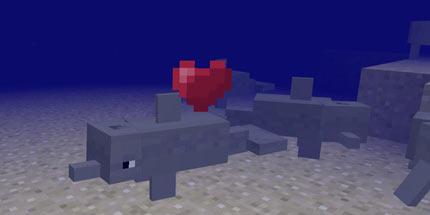 我的世界海豚驯服1.2【addons】