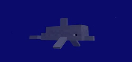 我的世界海豚驯服addons下载 手机版海豚驯服插件下载