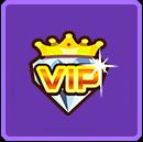 一个月VIP*1