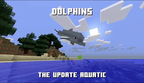 我的世界海豚在哪 手机版海豚怎么找