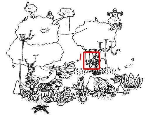 隐藏之人森林