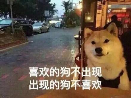 单身狗福音 元旦放假不如养个纸片人?