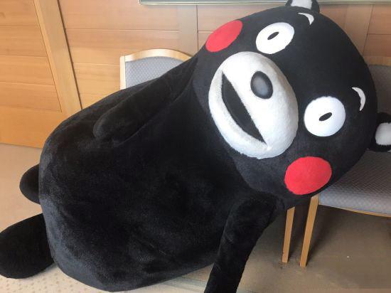 """日本知名吉祥物""""熊本熊""""推出TV动画 预计2019年播出"""