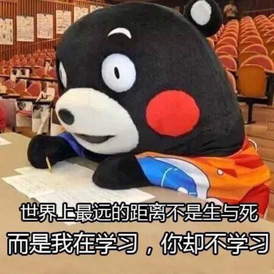 """日本知名吉祥物""""熊本熊""""推出TV动画"""