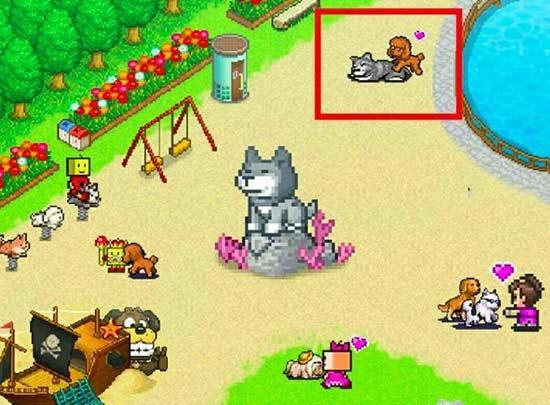 开罗游戏为中国玩家定制狗年新作《发现汪星人》 世界名犬齐聚