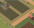 求生大作战农场家园截图壁纸