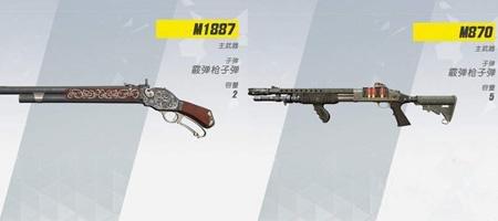 两把枪数据