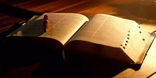 「就哔哔」如果人死后会根据生平变成一本书,你觉得你会是?