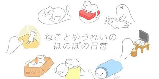 猫咪可爱 可是我是幽灵