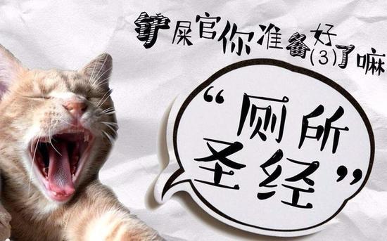 猫咪可爱可是我是幽灵