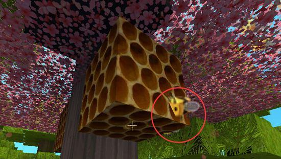 迷你世界蜜蜂怎么养 蜜蜂怎么繁殖