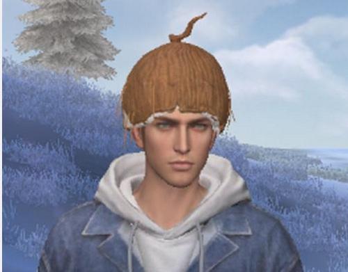 荒野行动椰子头盔