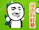 奥奇传说绿