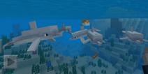 我的世界1.2.20.1Beta发布 海豚和海底废墟加入游戏