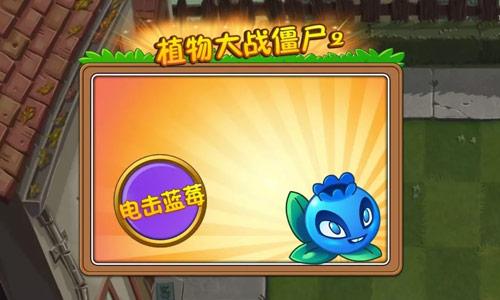 植物大战僵尸2蓝莓