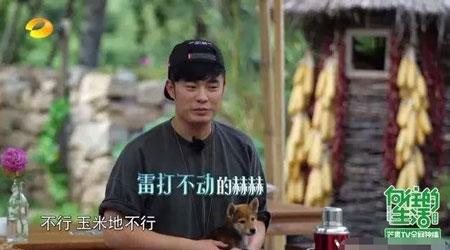 CF手游代言陈赫3