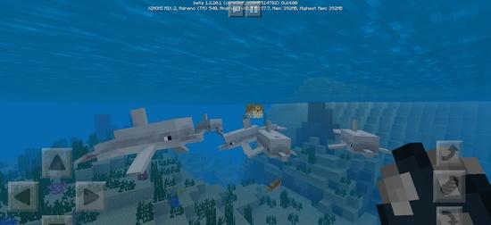 我的世界基岩版水域更新