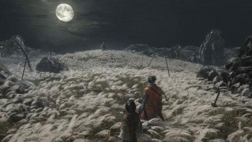 《隻狼》主角独臂忍者保护皇子