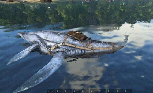 方舟生存进化蛇颈龙怎么抓