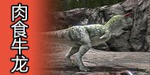 方舟生存进化肉食牛龙怎么驯服 肉食牛龙属性介绍