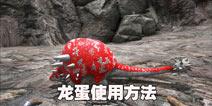 方舟生存进化恐龙蛋怎么用