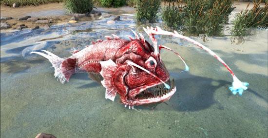 方舟生存进化安康鱼油哪里有