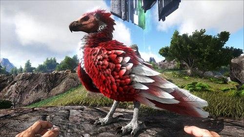 方舟生存进化老鹰怎么驯服