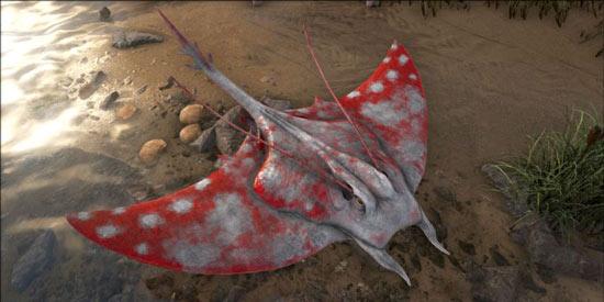 方舟生存进化蝠鲼吃什么