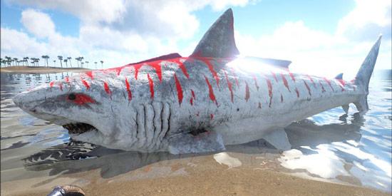 方舟生存进化巨齿鲨怎么驯服