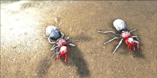 方舟生存进化蚂蚁