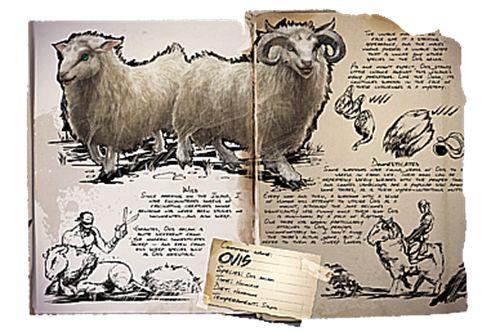 方舟生存进化绵羊