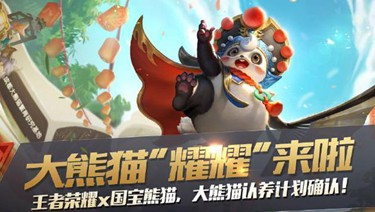 王者荣耀梦奇熊猫皮肤