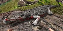 方舟生存进化帝鳄吃什么 方舟生存进化手机版帝鳄怎么驯服