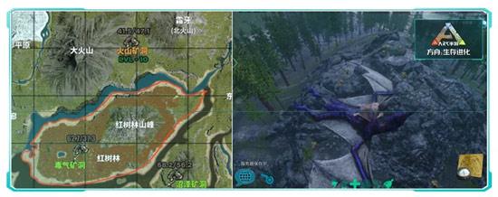方舟生存进化红树林