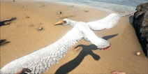 方舟生存进化伪齿鸟