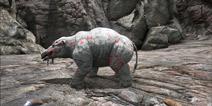 方舟生存进化渐新象在哪 方舟生存进化手机版渐新象有什么用