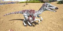 方舟生存进化伤齿龙怎么驯服 手机版伤齿龙属性和分布