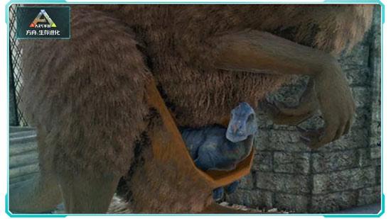 方舟生存进化宠物育儿袋