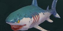 创造与魔法灰鲭鲨