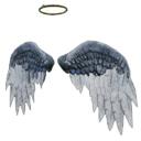 方舟生存进化天使翅膀皮肤