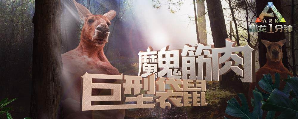 【驯龙1分钟】第19期:魔鬼筋肉—巨型袋鼠!