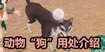 风云岛行动狗有什么用 动物狗用处介绍