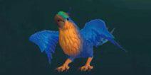 创造与魔法金刚鹦鸟