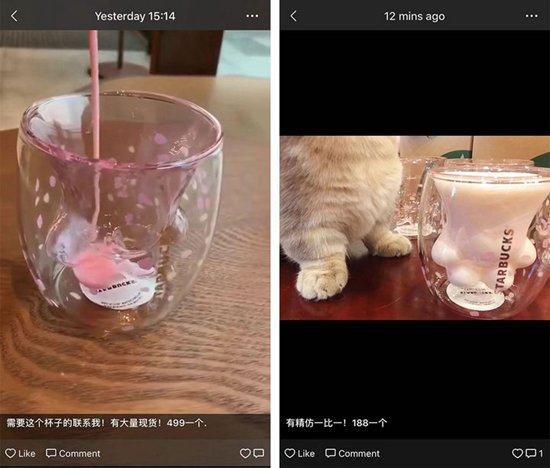 猫爪杯黄牛